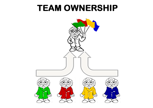 teamownershipnew
